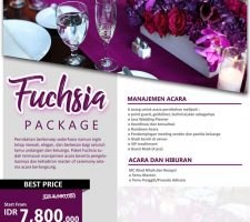 Fuchsia Package